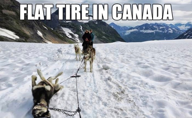 Canadian Tire Christmas Decorations